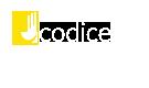 Ucodice IT Company